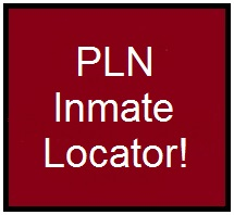 life in prison research paper